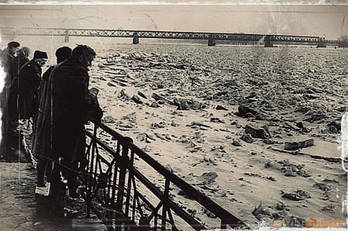 dunaj 1956.jpg