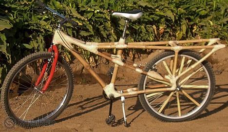 bamboo-bike-africa.jpg