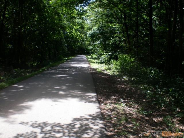 dlllho sa islo lesom ..parada..klud ticho..iba vtaciky..cesta ok.jpg