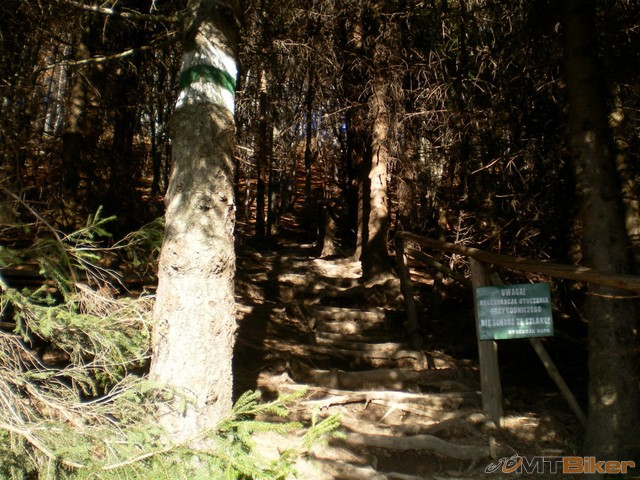 3.z jedneho lesa sme vysli a do dalsieho vosli..stretavali sme plno turistov aj dievcata mlade...jpg