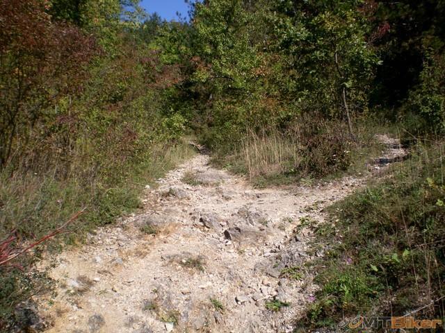 6.dalej to nejde musim prenasat do kopca...idem po lavej.jpg