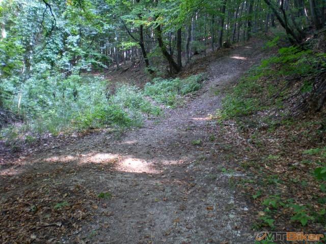 47.ked som zisiel dole schodmi tak som odbocil vpravo...tu sa to delilo na dalsie tri..vybral som si pravu..do kopca.jpg