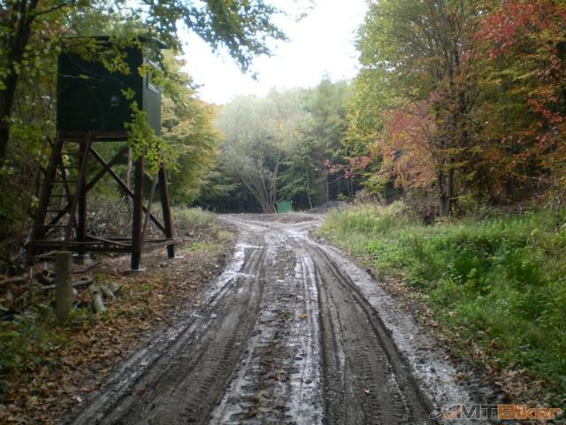 12.tocna blato dalej uz len do lesa studnicku nikde nevidim..trochu som skusal ale lepilo tak som to otocil spat.jpg