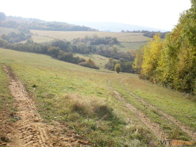 25.vysiel som z druheho lesika a baca s kravami..idem po lavej spravim taky obluk pozaneho cesta ako tak vidno.jpg