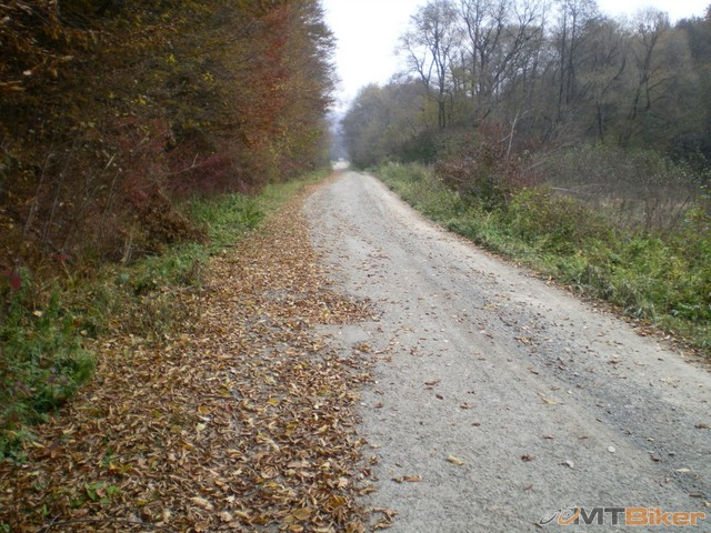 7.asfaltka vsade ok pocasie bez slnka inak ok..a kedze som v lese tak tu ani nefuka.jpg