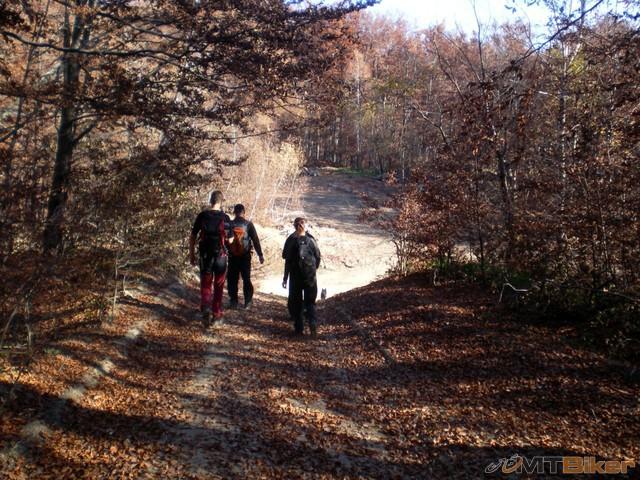 27.konecne krizovatka..doprava do runiny..mi rovno cez les dalej.jpg
