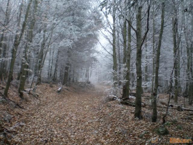 24.odbocka z hlavnej stupak do lesa ..uz nedaleko...jpg