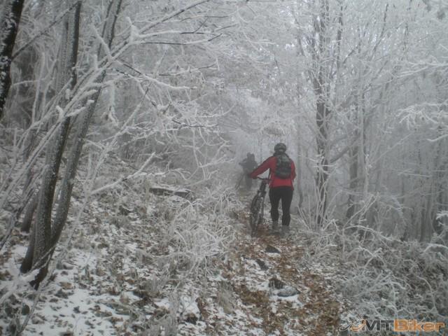 33.sneh sa na nas sype z konarov...uz pod vrchom..po tych kamenoch to poriadne sykalo...jpg
