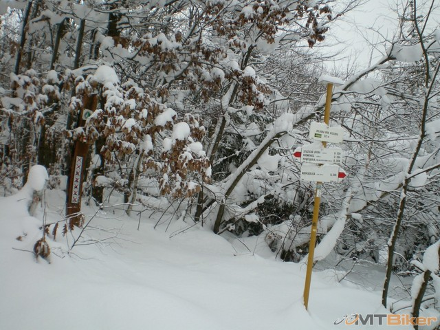 8.po pravej strane ako stala buda ideme hore do lesa.jpg