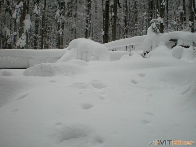 38.tak kremenec nam dnes nevysiel...bez znaciek a v tak vysokom snehu ..no co uz mozno nabuduce....jpg