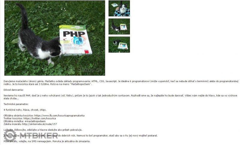 catphp.jpg