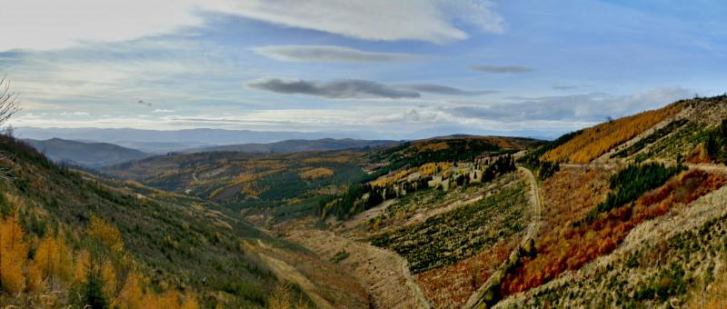 PA310002_panorama.jpg