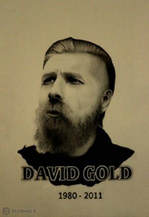 david gold.jpg