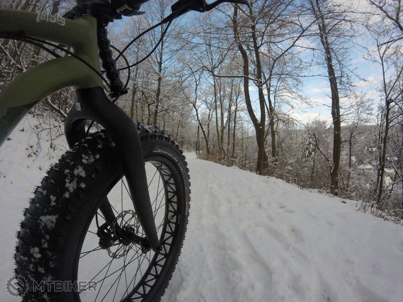 Fatboy tire a Schuster trail.jpg