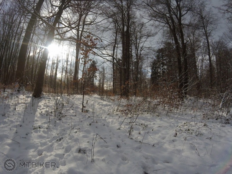 Nádhera v lese pod Jahodnou....jpg