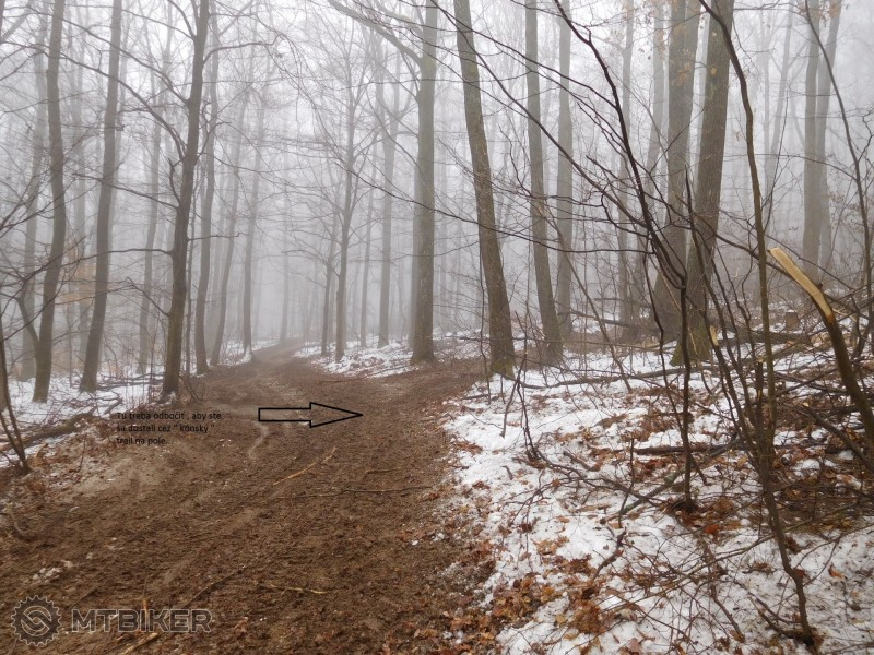 Rozmrdaný trail z H.Bankova smer na pole s následným napojením pod vedenie....jpg