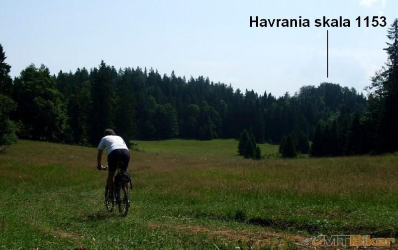 CV_havrania_na-luke-strosik-+.JPG