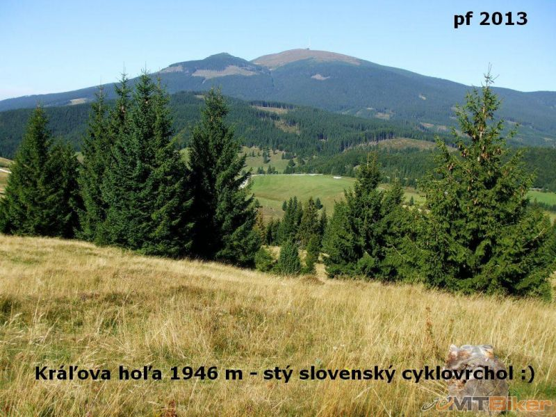 CV_kralovka_100.jpg