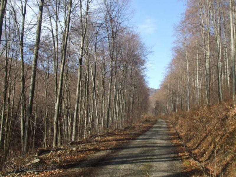 CV_lacova-cesta-na-lajosku_2014jan-.jpg
