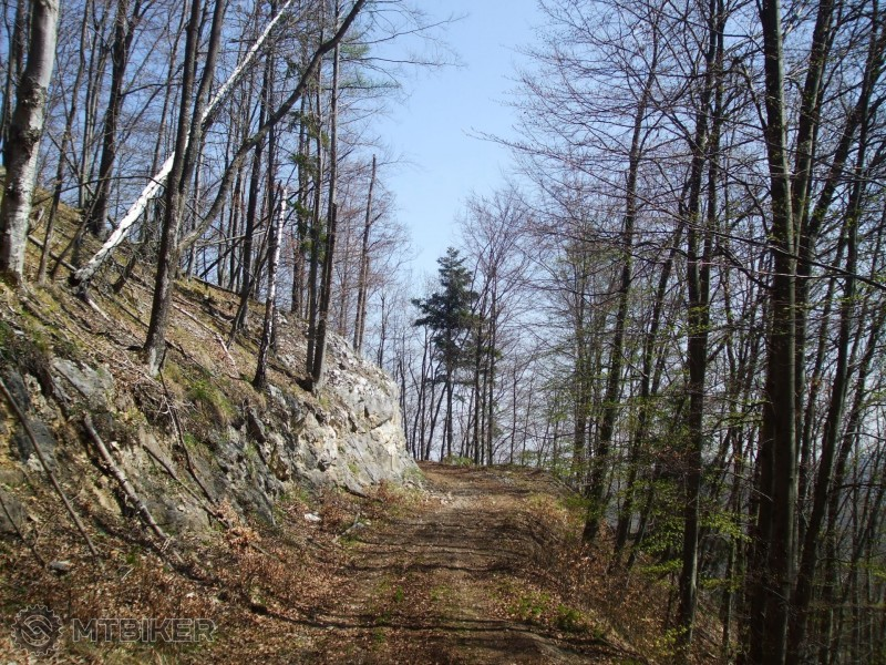 CV_folk-skala_cesta-v-skale-pred-zemickami_2014apr.jpg