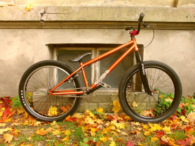 ns-bikes-capital-23043_1.jpg