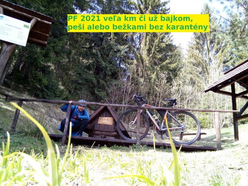 IMG_20200430_115149-pf.jpg