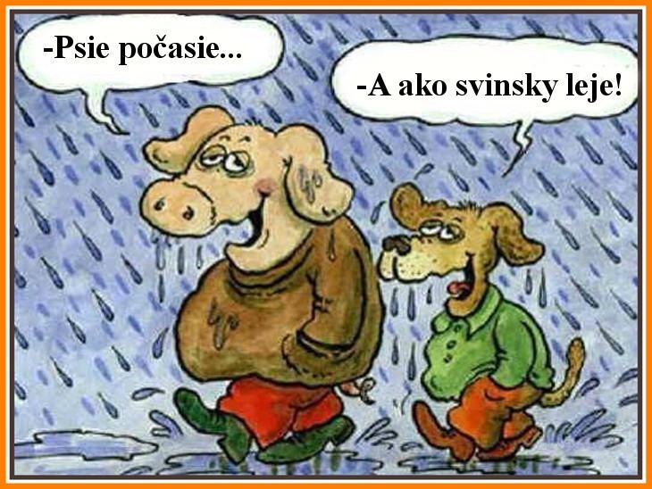 Psie-počasie.jpg