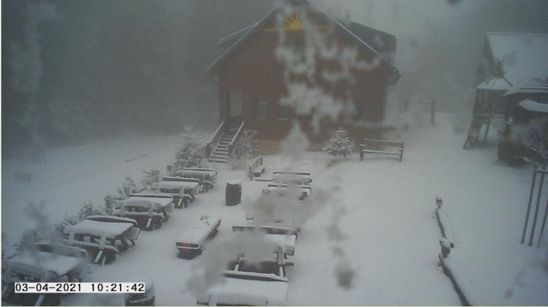 sneh.jpg