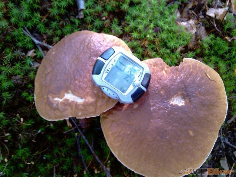 GPS_IMAG0094.jpg