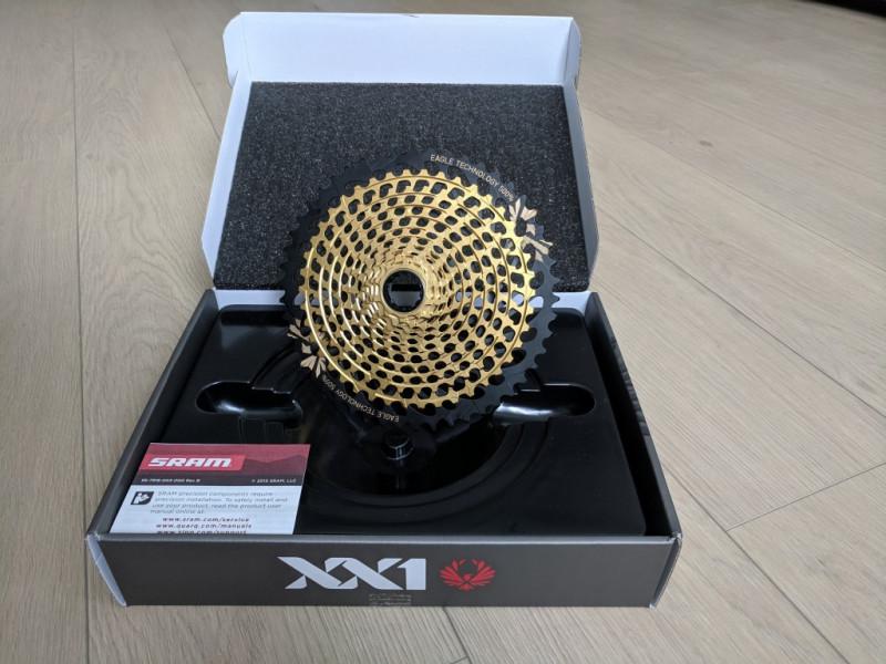 XX1 Eagle Gold.jpg