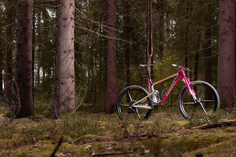 ghost-bikes-lector-fs-special-edition-2.jpg