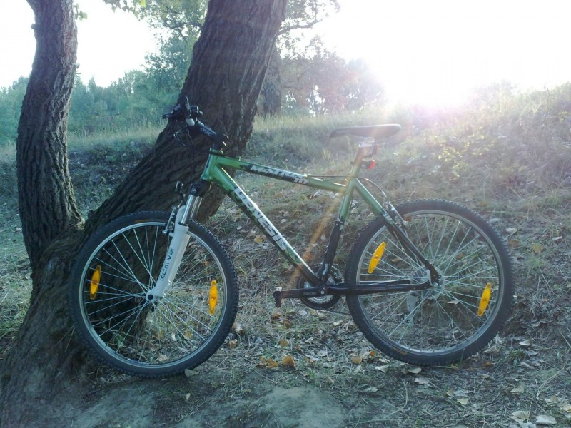 moj nw bike.jpg