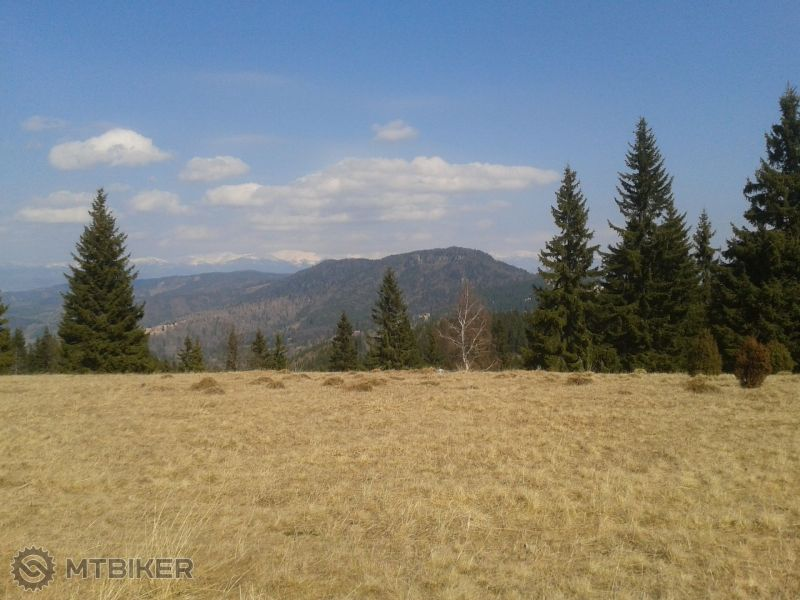 Bukovina.jpg