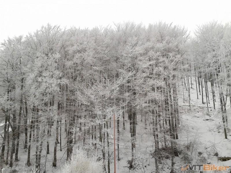 2012-12-23 11.01.22.jpg
