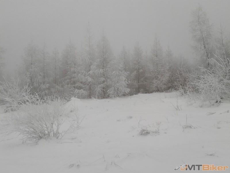 2012-12-23 13.46.18.jpg