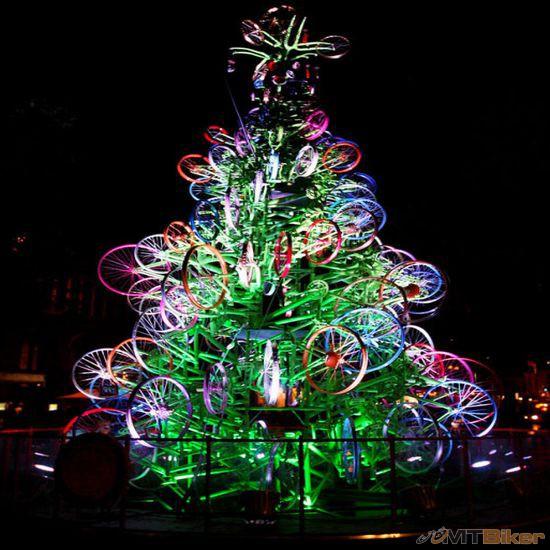 tree-cycle_vgx6H_24429.jpg
